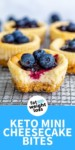 Keto mini cheesecake bites (1)